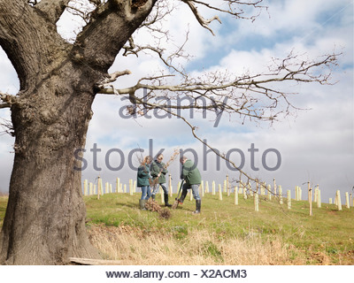 Man And Children Planting Young Trees - Stock Photo