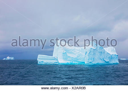 Icebergs in the South Georgia and the South Sandwich Islands - Stock Photo