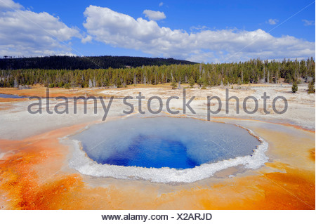 Crested Pool, a hot spring in Upper Geyser Basin, Yellowstone National Park, Wyoming, USA - Stock Photo