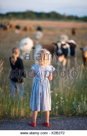 Two girls looking at cows on pasture - Stock Photo