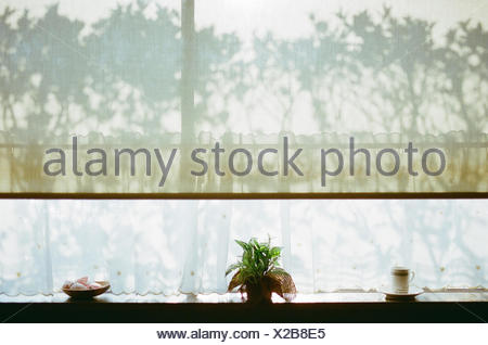 Window Sill And Shadows - Stock Photo