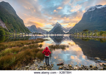 Tourist looking at the landscape, Miter Peak reflected in the water, sunset, Milford Sound, Fiordland National Park, Te Anau - Stock Photo