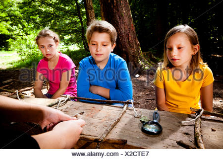 Children crafting in a forest camp, Munich, Bavaria, Germany - Stock Photo
