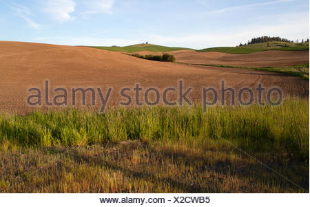 Freshly plowed field waits for spring planting - Stock Photo