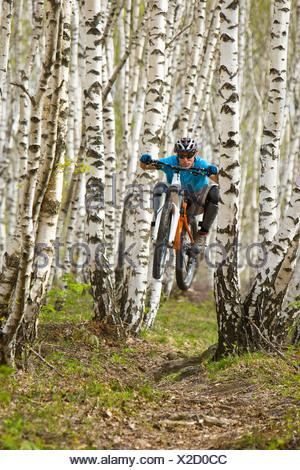 Italy, Lake Como, Mountain biker riding in the woods - Stock Photo