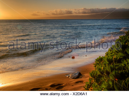 Sunsets warm glow on golden sand beach, West Maui, Hawaii. Island of Lanai in the distance