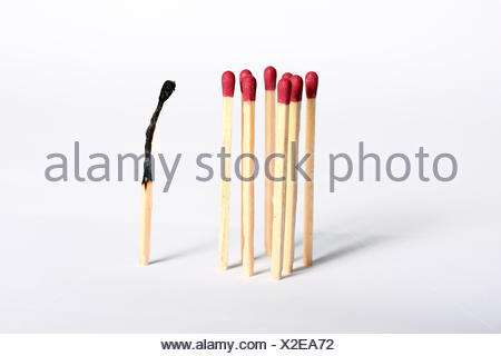 mobbing match burnt out - Stock Photo