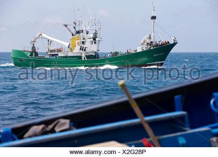 Fishing boat, Getaria, Gipuzkoa, Euskadi, Spain Stock Photo