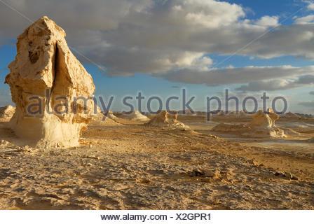 Mushroom-shaped limestone rock formations, White Desert, Farafra Oasis, Western Desert, Egypt, Africa - Stock Photo