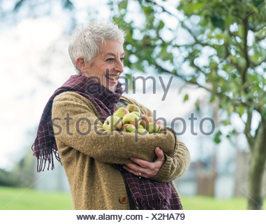 Happy senior woman with armful of apples - Stock Photo