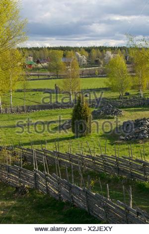 Old fences in pastureland Sweden - Stock Photo