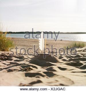 Finland, Pori, Yyteri, Sandcastle with feather on sandy beach - Stock Photo