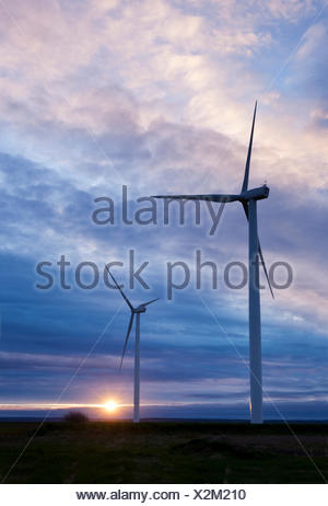 Two wind turbines silhouetted against the setting sun. The turbines are among 15 at the Amherst Wind Farm located in Amherst, - Stock Photo