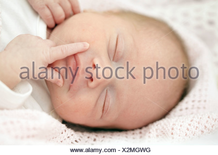 Two week old baby girl - Stock Photo