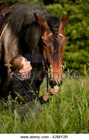 Woman and a Belgian Draft horse in a meadow - Stock Photo