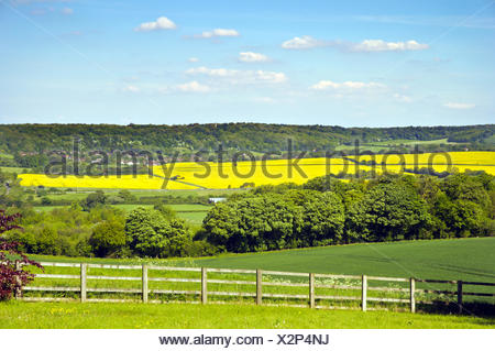The Chilterns in Spring - Stock Photo