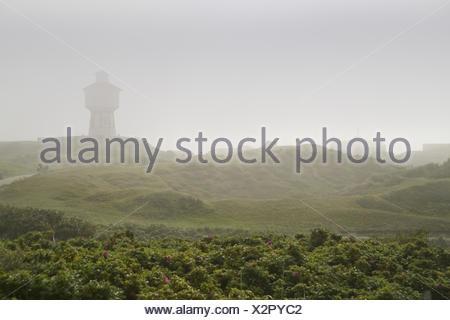 Dunes, the North Sea, island Langeoog, fog - Stock Photo