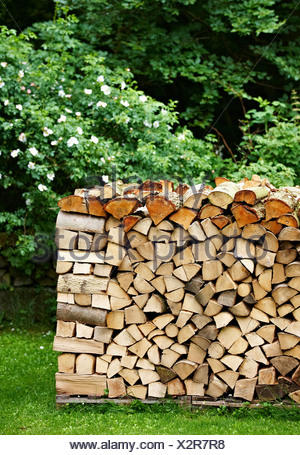 Pile of firewood in backyard
