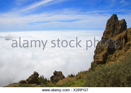 view from the Pico de las Nieves over the cloud cover below, Canary Islands, Gran Canaria - Stock Photo