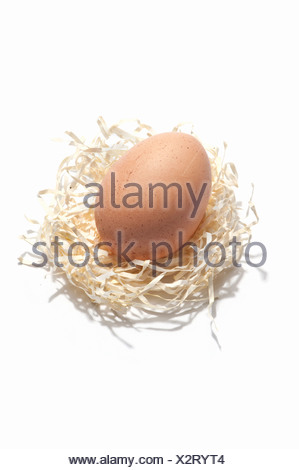 A chicken egg on a paper straw nest - Stock Photo