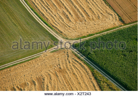 Agricultural paths dividing different fields, Bavaria, Germany - Stock Photo