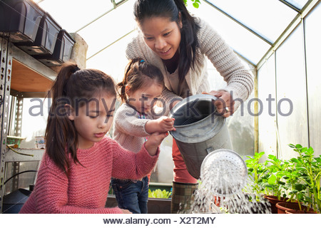 Mother and daughters watering plants in greenhouse - Stock Photo