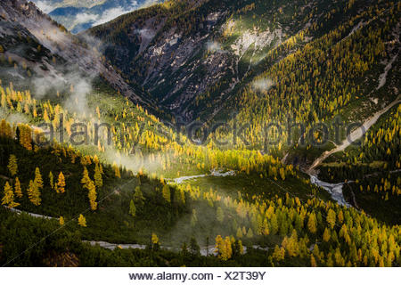 View over Val Cluozza in autumn, Swiss National Park, Canton of Grisons, Switzerland - Stock Photo