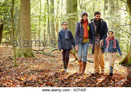 Beech woods in Autumn, with green and autumnal red and orange foliage.