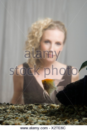 A mid adult woman in back of a home aquarium with a freshwater angelfish - Stock Photo