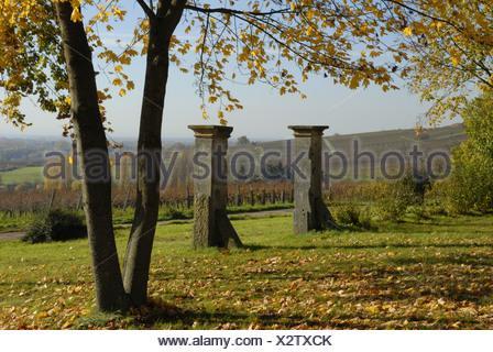 autumn scenery in vineyards near Klingenmuenster, Germany, Rhineland-Palatinate, Pfalz, Deutsche Weinstrasse - Stock Photo