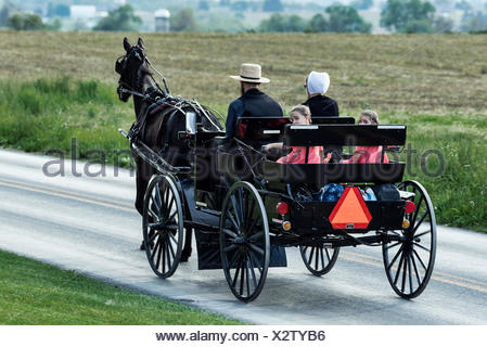 Amish family in horse drawn buggy, Ronks, Lancaster County, Pennsylvania, USA - Stock Photo