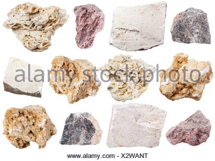 collection from specimens of limestone rock - Stock Photo