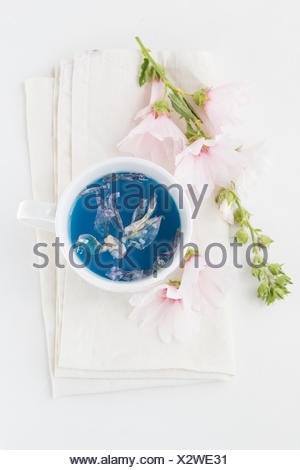 Cup of Mallow tea and blossoms - Stock Photo