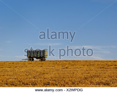 Wheat fields and natural landscape in the biosphere reserve Bardenas Reales, Navarre, Spain, Europe - Stock Photo