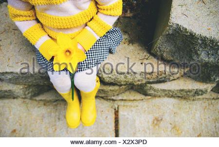 Girl holding daffodil (2-3 years) - Stock Photo