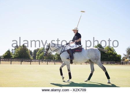 Mid adult man playing polo - Stock Photo