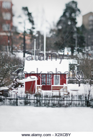 Allotment in the snow - Stock Photo