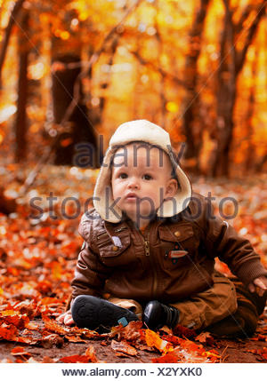 Little boy (6-11 months) sitting in leaves in park - Stock Photo