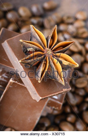 Macro shot to anise with chocolate - Stock Photo