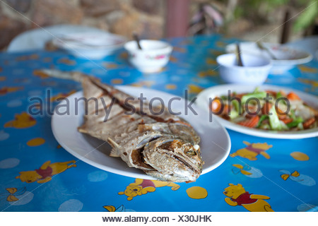 Plates of fish and vegetables on table - Stock Photo