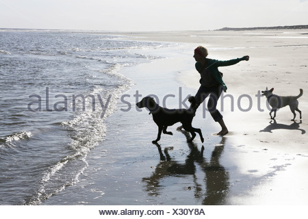 Germany, Lower Saxony, East Frisia, Langeoog, woman playing with her dogs at the beach - Stock Photo