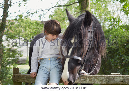Portrait of boy sitting on farm gate with horse - Stock Photo