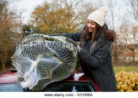 A young woman holding a Christmas tree to tie to roof of car - Stock Photo