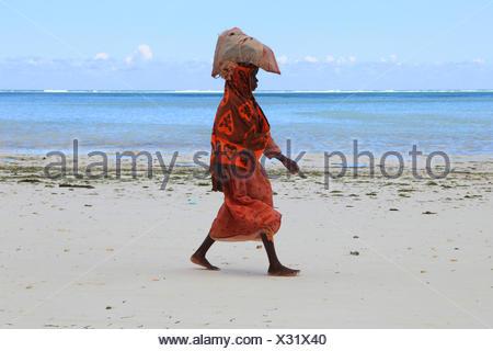 woman carrying a bag with seaweeds on her head on sandy beach, Tanzania, Sansibar - Stock Photo
