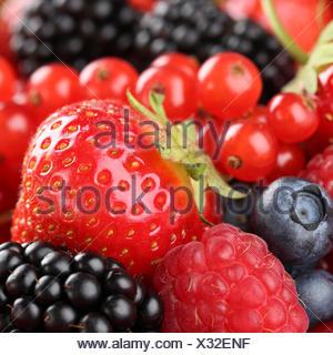 Erdbeeren, Blaubeeren, Himbeeren, Johannisbeeren und Brombeeren - Stock Photo
