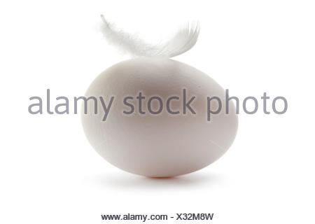 Fresh white egg with a feather on white background. - Stock Photo
