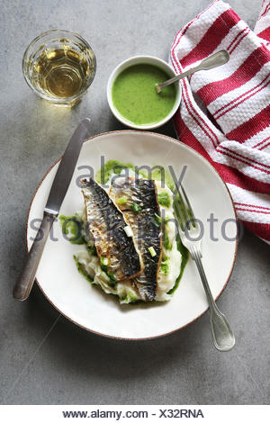 Two fillets of grilled mackerel fish on a plate with mashed potatoes and salsa verde.Top view - Stock Photo
