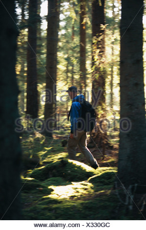 Man hiking in the forest, Smaland, Sweden. - Stock Photo
