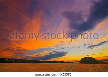 Sunrise at 'Bolton Farm' Baljennie Saskatchewan Canada - Stock Photo
