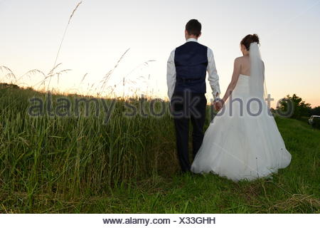 Bridal couple in sunset from behind - Stock Photo